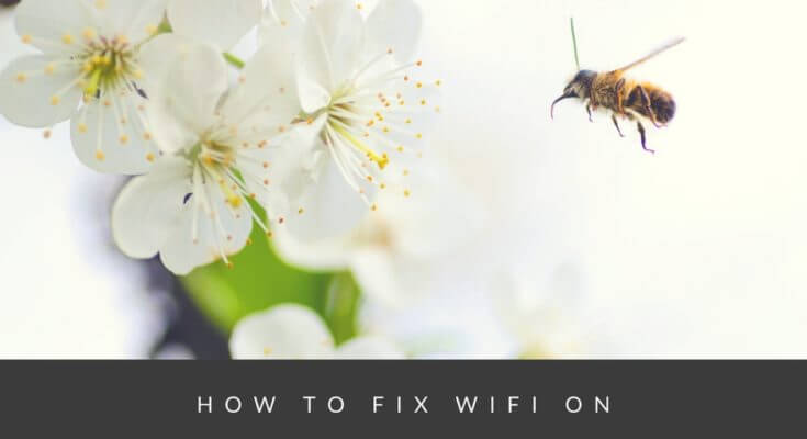 Solution for not working WiFi on Redmi 4