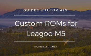 Download Custom ROMs for Leagoo M5